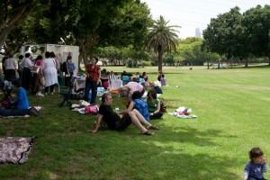 סטלבט על הדשא - התמונה באדיבות אילת בר-נוי